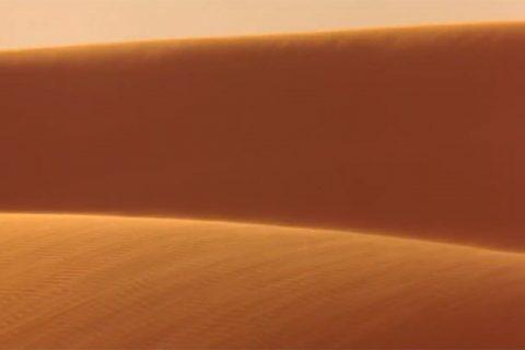 dune remake